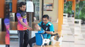 Kucing kelaparan, sakit di UUM dapat perhatian mahasiswa