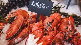 Sedapnya makan lobster, berkhasiat pula tu…