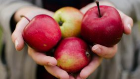 Tip pilih epal rangup dan manis. Pilih elok-elok baru sedap makan!
