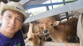 Hos TV raih pendapatan lumayan hasil pertanian, penternakan