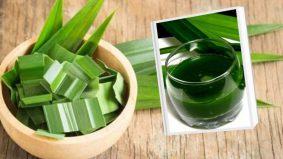 Kekalkan aroma daun pandan lebih dari 3 hari tanpa hilang aromanya