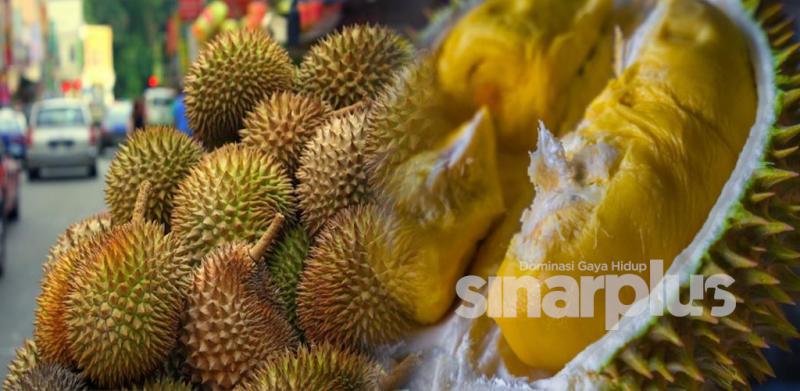 9 cara mudah pilih buah durian yang best!
