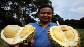 Senangnya beli durian guna online