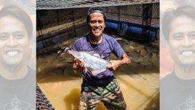 Perniagaan ikan patin sangkar jadi sandaran Amerul Affendi