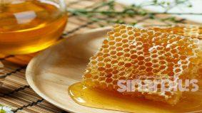 Khasiat sarang lebah yang ramai tak tahu