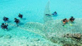 Sebelum jejak Pulau Perhentian, 'kaki snorkeling' kena tahu 'port baik' ni