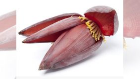 Jantung pisang bantu masalah diabetes dan kurang sel darah merah