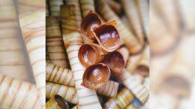 Dodol dalam kon? Ini rupanya celorot yang orang Sarawak suka makan tu