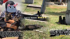Buang kucing peliharaan, hukuman penjara dan denda RM100,000 menanti si pelaku!