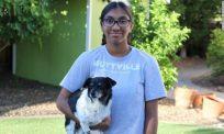 Gadis anak angkat baru usia 14 tahun bantu sediakan 'rumah' anjing tua yang ditinggalkan