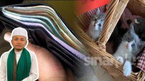 5 rahsia murah rezeki perkongsian PU Amin, salahnya satu daripadanya bagi kucing makan
