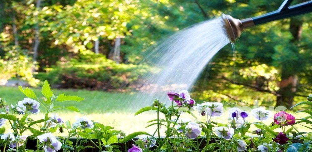 Langkah berhemat penggunaan air, mampu membantu di saat hadapi gangguan bekalan!